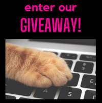 giveaway click here newer